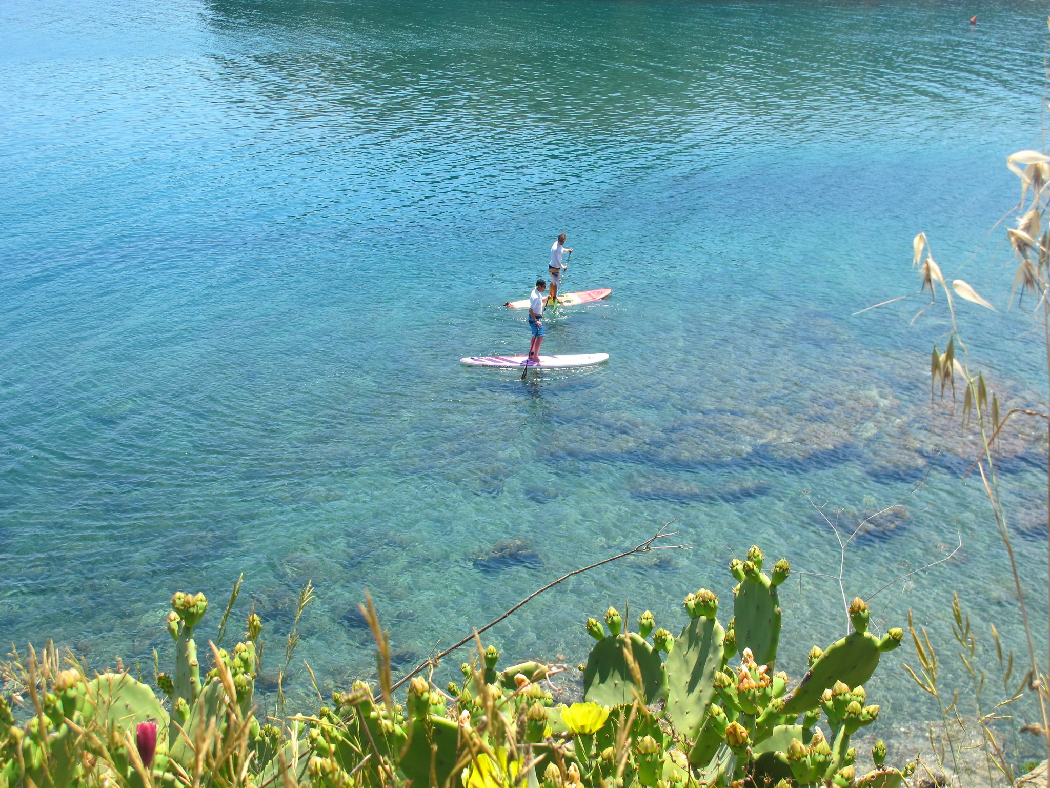 Get up, Stand Up. Stand Up Paddle for your …