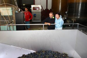 Lionel et France regardant le raisin