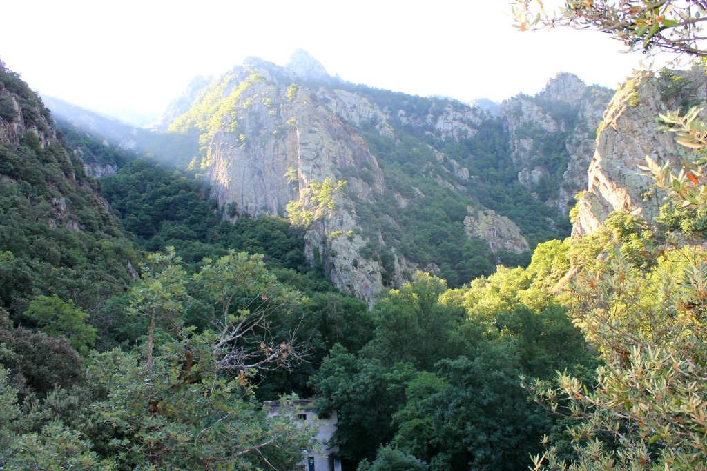Chemin l'abbaye de Saint-Martin du Canigou