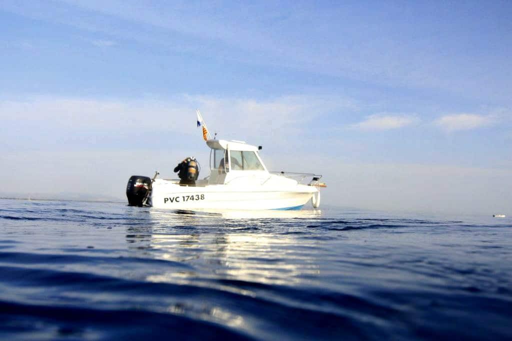Plongée sous-marine dans les Pyrénées-Orientales au large de Saint Cyprien